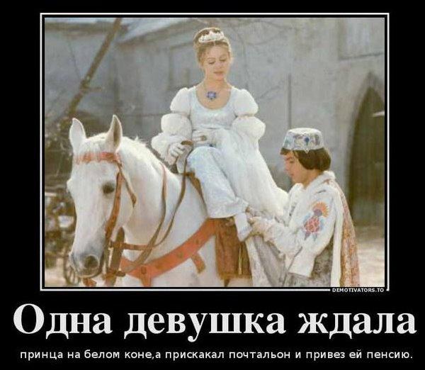 девушка на белом коне, принц на коне, кони принц,конь в пальто,