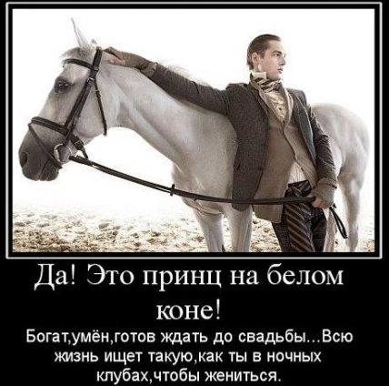 принц на коне ждет тебя, ищу коня на белом принце, конь в пальто,